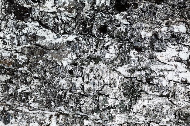Primo piano in legno texture di sfondo Foto Gratuite