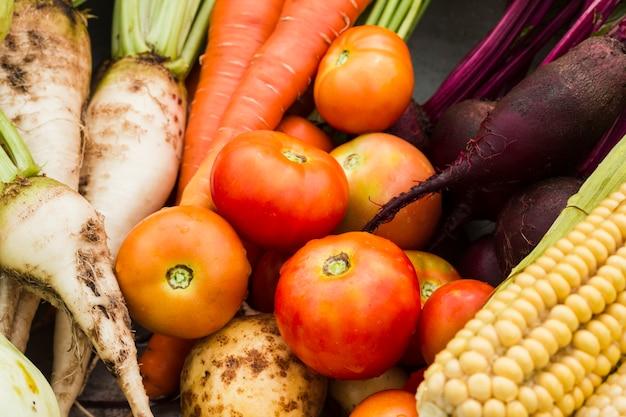Primo piano saporito delle verdure del giardino Foto Gratuite