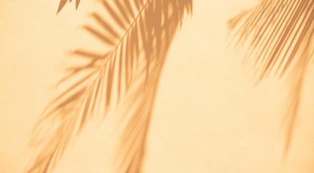 Priorità bassa astratta delle foglie di palma delle ombre su una parete bianca. Foto Gratuite