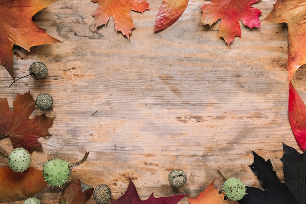 Priorità bassa di autunno con foglie su legno Foto Gratuite