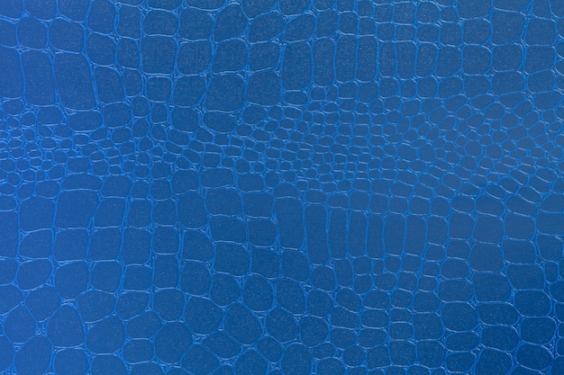 Priorità bassa di struttura in pelle blu, foto del primo piano, Foto Premium