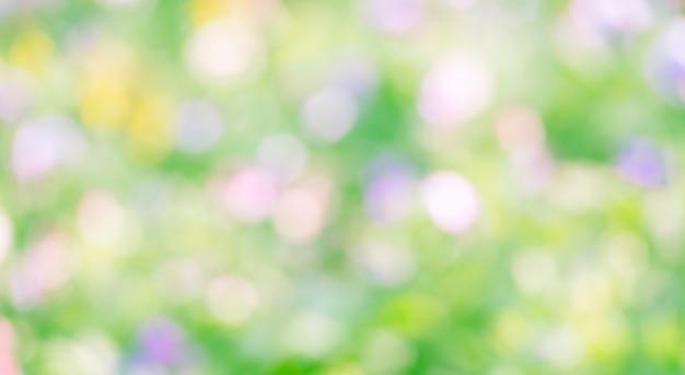 Priorità bassa verde astratta del bokeh. Foto Premium