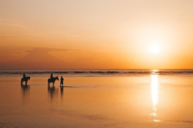 Profili il ritratto di giovani coppie romantiche che guidano a cavallo alla spiaggia. ragazza e il suo ragazzo al tramonto colorato d'oro Foto Gratuite