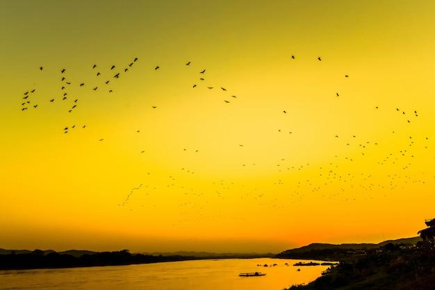 Profili la sera del fiume del tramonto con gli uccelli di volo della moltitudine sopra il cielo di giallo del lago / il tramonto asia del fiume mekong Foto Premium