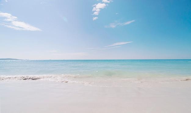 Pulisca il paesaggio della spiaggia del mare Foto Gratuite
