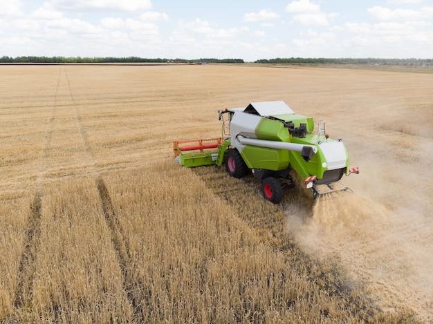 Raccolta del grano in estate Foto Premium