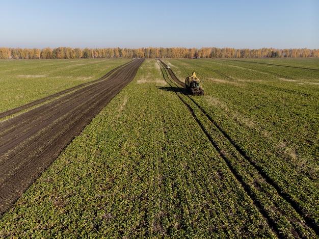 Raccolta dell'altezza del macchinario del campo della barbabietola da zucchero durante il giorno Foto Premium
