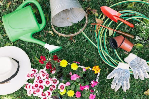 Raccolta di attrezzature da giardinaggio su erba Foto Gratuite