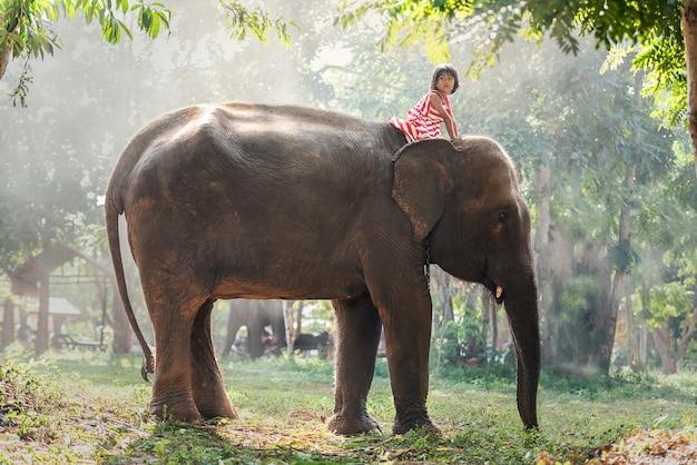 Ragazza del bambino che guida sull'elefante del bambino Foto Premium