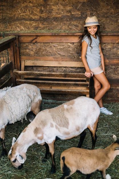 Ragazza felice che esamina le pecore che pascono erba nel granaio Foto Gratuite