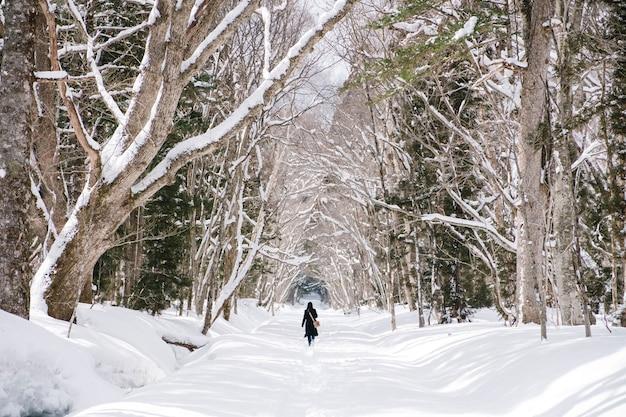 Ragazza nella foresta della neve al santuario di togakushi, giappone Foto Gratuite
