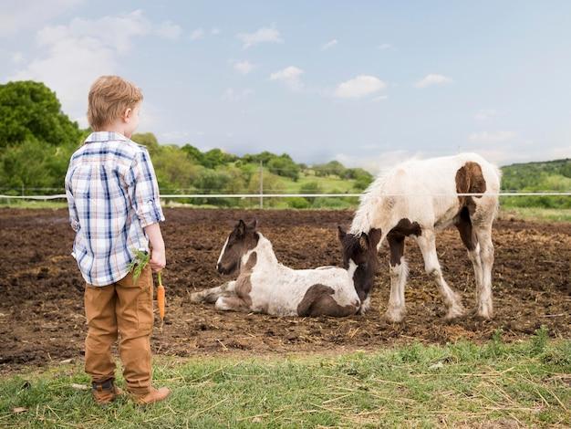Ragazzino che sta accanto agli animali da allevamento Foto Gratuite