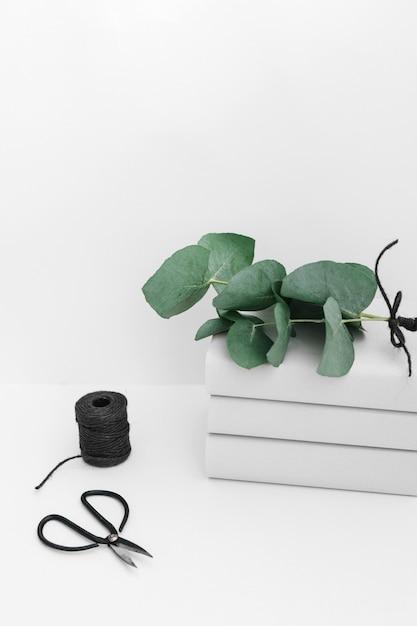 Ramoscello sul libro impilati con bobina nera e forbice isolato su sfondo bianco Foto Gratuite