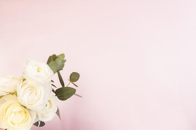 Ranunculus bianco Foto Premium