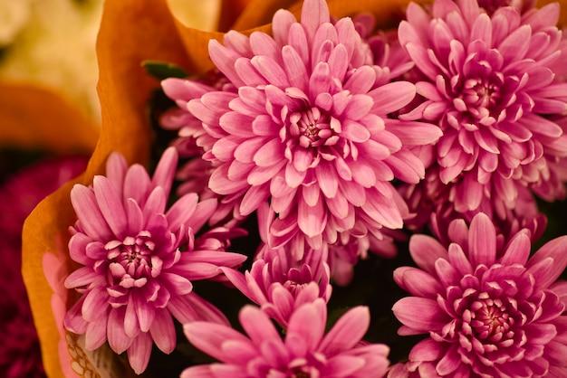 Regala un mazzo di fiori di crisantemi scarlatti Foto Premium