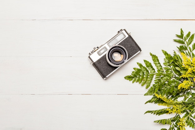 Retro macchina fotografica e foglie di felce Foto Gratuite