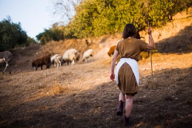 Retrovisione della donna che cammina con il bastone mentre radunando le pecore Foto Gratuite