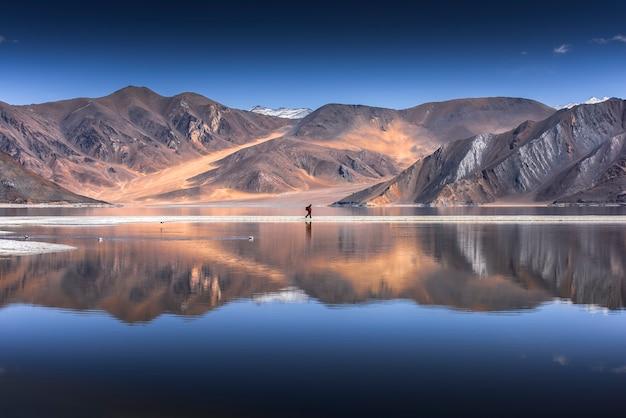 Riflessione delle montagne sul lago pangong con la priorità bassa del cielo blu Foto Premium
