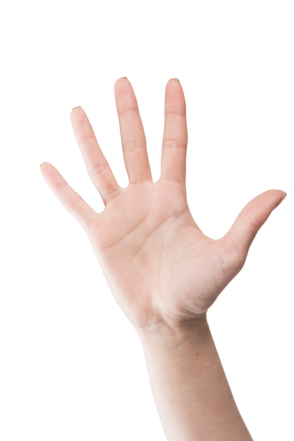 Ritaglia la mano su bianco Foto Gratuite