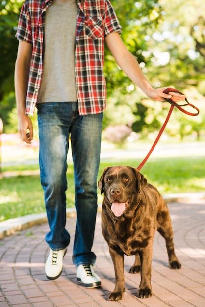 Ritratto di un cane con l'uomo nel parco Foto Gratuite