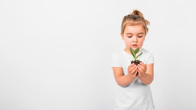 Ritratto di una pianta della piantina della tenuta della ragazza a disposizione contro il contesto bianco Foto Gratuite