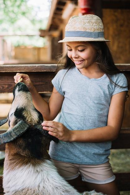 Ritratto di una ragazza che alimenta il cibo alle pecore nel fienile Foto Gratuite