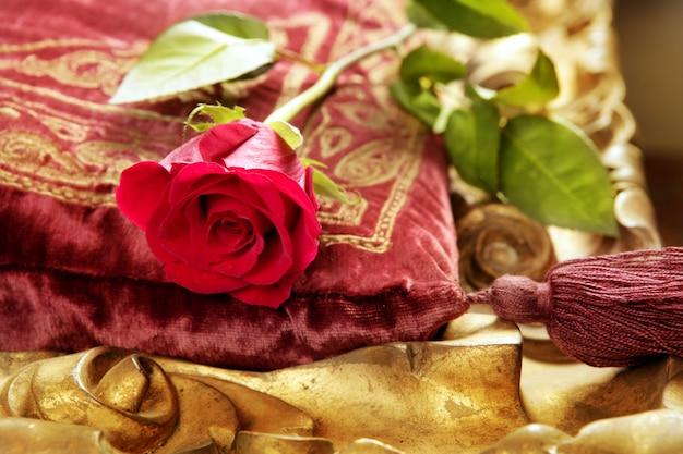 Rosa rossa classica sul cuscino vintage in velluto ricamato Foto Premium