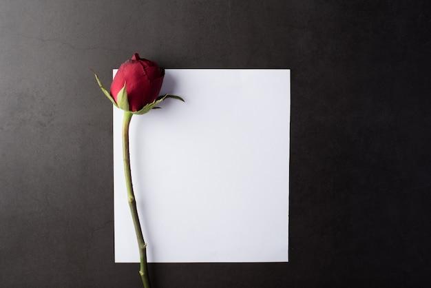 Rosa rossa con carta bianca Foto Gratuite