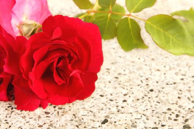 Rosa rossa del mazzo su fondo di marmo bianco con lo spazio della copia, concetto di amore e san valentino. Foto Premium