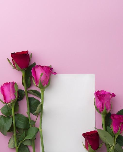 Rose Rosa E Rosse Su Sfondo Rosa Con Spazio Cornice Di Carta