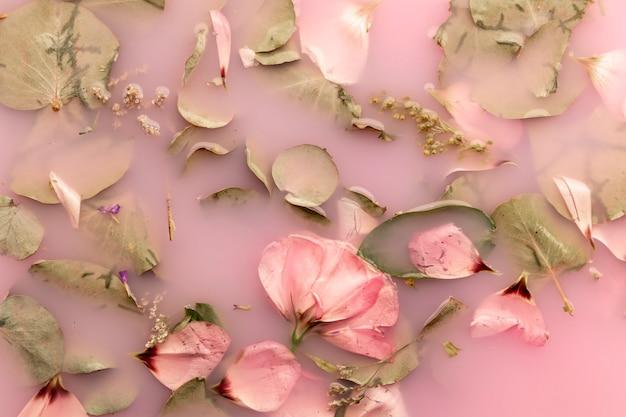 Rose rosa in acqua di colore rosa Foto Gratuite