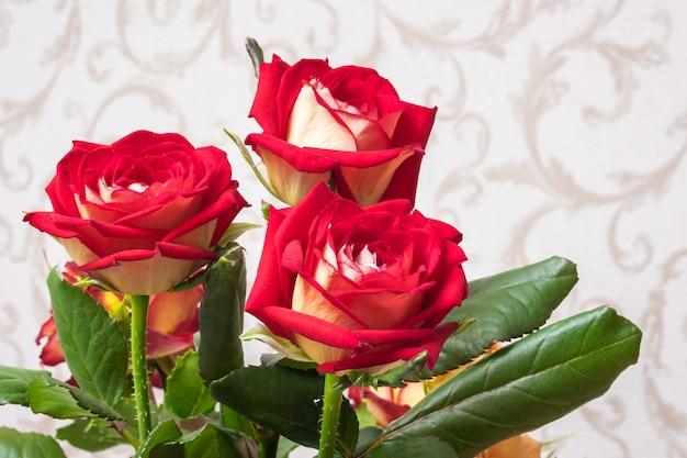 Rose rosse nella stanza su uno sfondo sfocato. fiori per saluti e decorazioni delle vacanze Foto Premium
