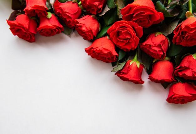 Rose rosse su sfondo bianco Foto Premium