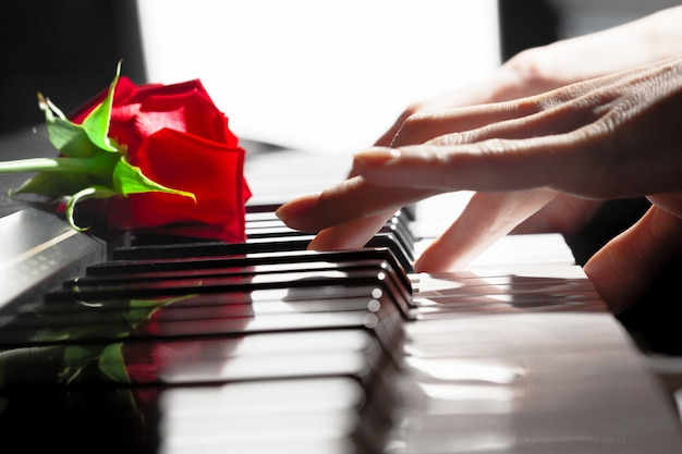 Rose rosse sui tasti del pianoforte Foto Premium