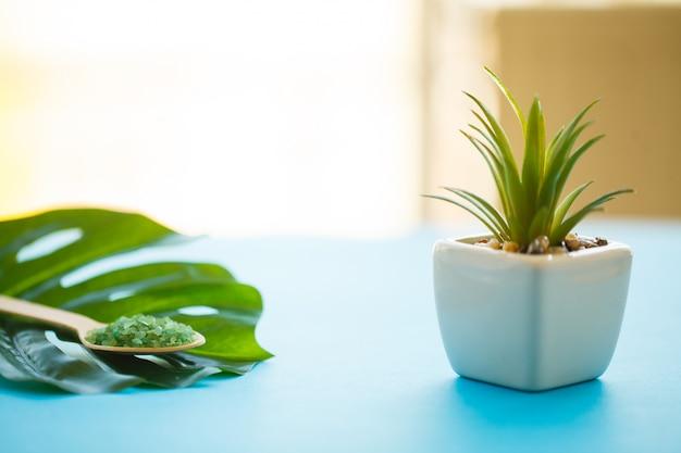 Sale da bagno verde in primo piano cucchiai di legno Foto Premium