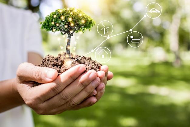 Salvare il mondo e il concetto di innovazione, la ragazza che tiene una piccola pianta o un alberello sta crescendo dal suolo sul palmo con la linea di connessione, l'ecologia e il concetto di conservazione Foto Premium