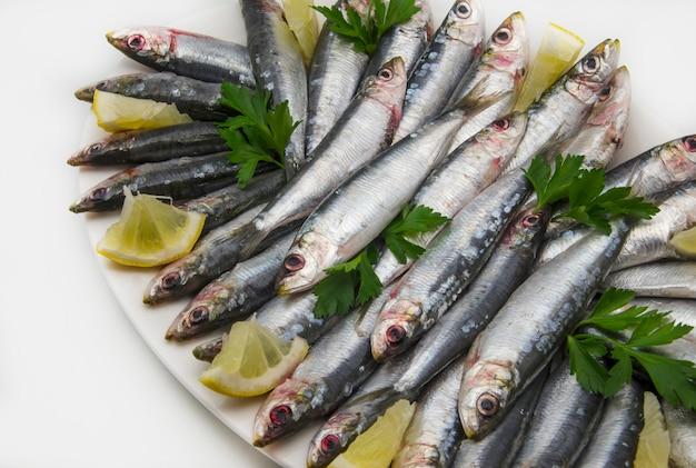 Sardine fresche Foto Premium