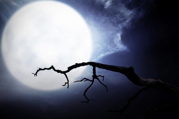 Scena di notte spaventoso con ramo, luna piena e nuvole scure Foto Premium