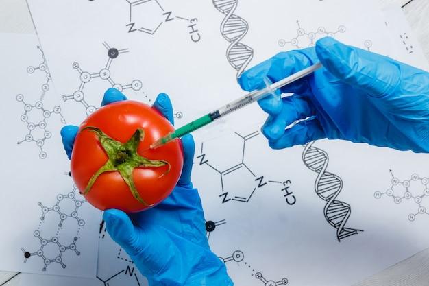 Scienziato ogm che inietta liquido verde dalla siringa al pomodoro rosso Foto Premium