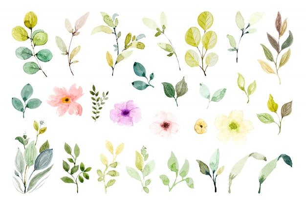 Set di elementi di design ad acquerello. Foto Premium