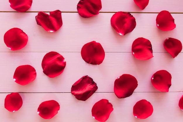 Set di petali di fiori rossi Foto Gratuite