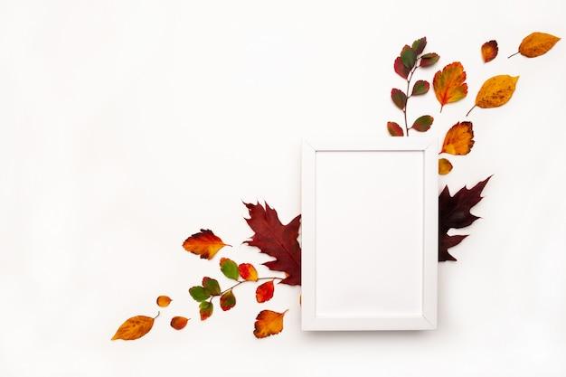 Sfondo autunnale con decorazioni naturali. cornice bianca, foglie secche autunnali. vista piana, vista dall'alto. copia spazio per promozioni e sconti stagionali Foto Premium