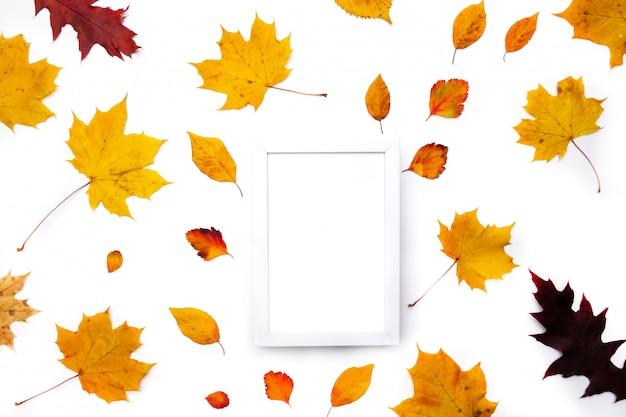 Sfondo autunnale. le foglie. foglie di acero su sfondo bianco. vista piana, vista dall'alto. copia spazio per promozioni e sconti stagionali. Foto Premium