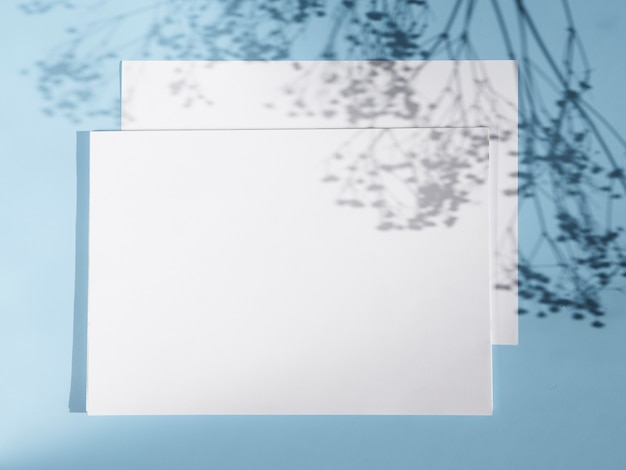 Sfondo azzurro con due ombre bianche in bianco e rami Foto Gratuite