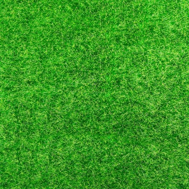 Sfondo di erba verde brillante Foto Gratuite