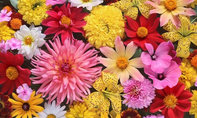 Sfondo di fiori da giardino estivo Foto Premium