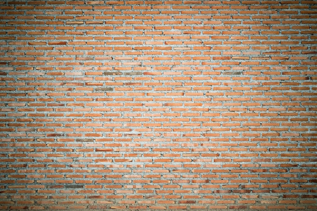 Piastrella da interno da pavimento da parete in calcare