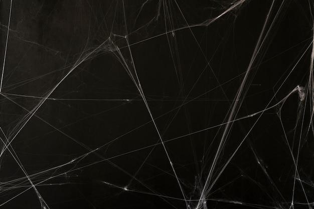 Sfondo di halloween di cobweb Foto Gratuite