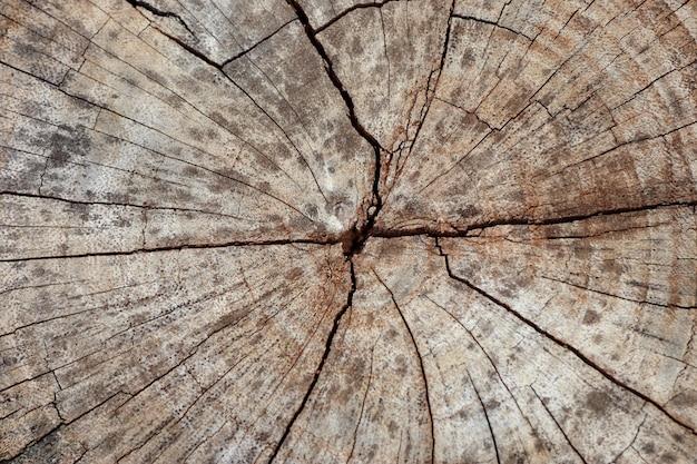 Sfondo di legno Foto Premium