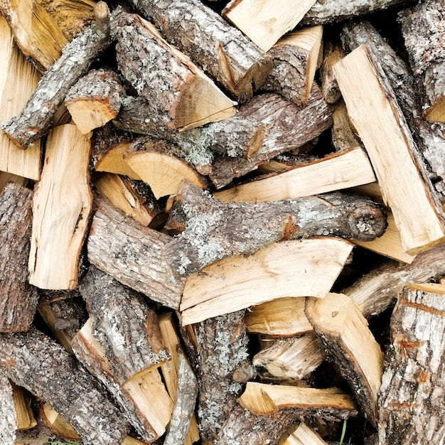 Sfondo di tronchi di legno naturale Foto Gratuite